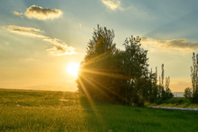 Sunset in the country